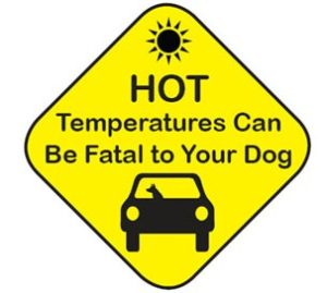 Paw-Pals-Hot-temps-fatalities-300x269