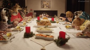 13-dogs-and-1-cat-at-christmas-dinner