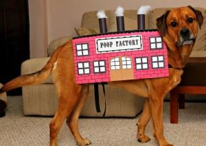 poop factory dog costume