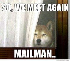 mailmn