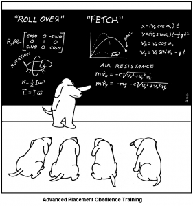 every_time_your_dog_fetches_a_ball_it_is_doing_calculus-s744x794-105312
